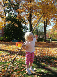 leaf_raking